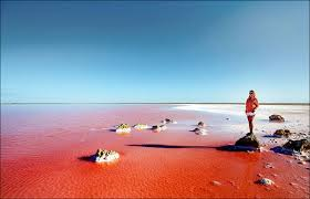 ساسیک سیواش ، دریاچه ای به رنگ صورتی