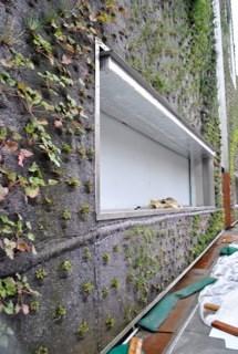 دکوراسیون دیوار با پوششی از گیاهان!
